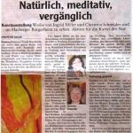 Mittelschwäbische Nachrichten 10.04.2010